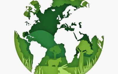Une démarche écologique pour la société BFOI !